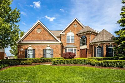 Novi Single Family Home For Sale: 24570 Terra Del Mar Dr