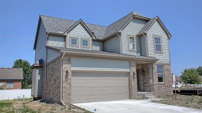 Chesterfield Twp Single Family Home For Sale: 47630 Viola Lane