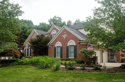 Northville Single Family Home For Sale: 17500 Oak Hill Drive