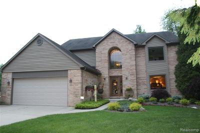 Brownstown Twp Single Family Home For Sale: 22645 Anmarie Court