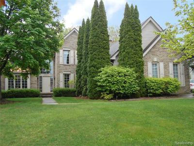 Auburn Hills Single Family Home For Sale: 4380 Arcadia Drive