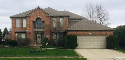 Macomb Twp Single Family Home For Sale: 48102 Sonny Drive