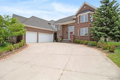 Rochester Hills Single Family Home For Sale: 801 Canyon Creek Court