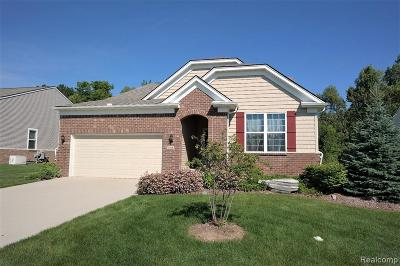 Grand Blanc Condo/Townhouse For Sale: 9356 Pine Valley Drive #218