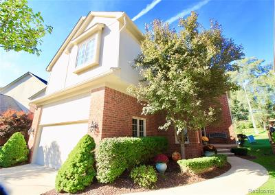 Shelby Twp Condo/Townhouse For Sale: 4099 Winter Drive