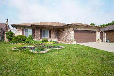 Sterling Heights Single Family Home For Sale: 38169 Dray Drive