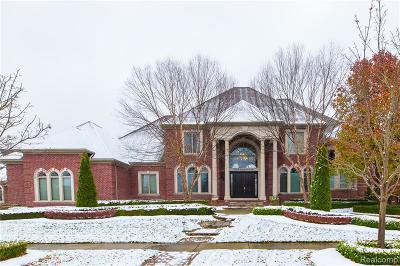 Shelby Twp Single Family Home For Sale: 53320 Pondview Drive