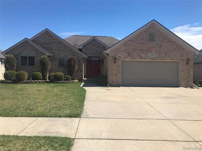 Macomb Twp Single Family Home For Sale: 51488 Blue Spruce Drive