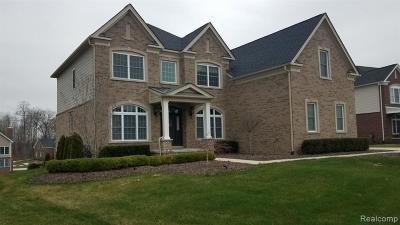 Novi Single Family Home For Sale: 24549 Nepavine Drive