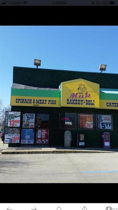 Madison Heights Commercial For Sale: 46709 E. Briarwood Dequindre Road