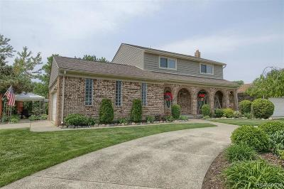 Macomb Twp Single Family Home For Sale: 47485 Tilch Road