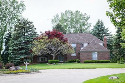 Rochester Hills Single Family Home For Sale: 1187 Chaffer Drive