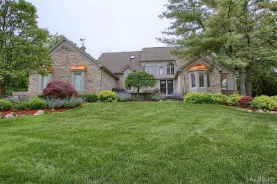 Farmington Hills Single Family Home For Sale: 28003 Copper Creek Lane
