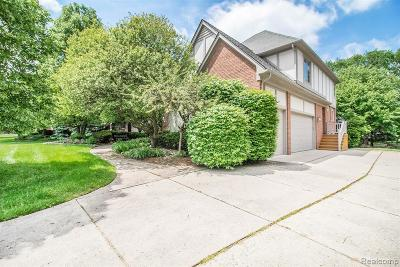 Rochester Single Family Home For Sale: 3701 Edinborough Drive