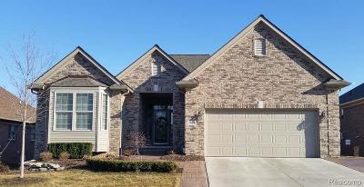 Addison Twp Single Family Home For Sale: 5377 Rochester