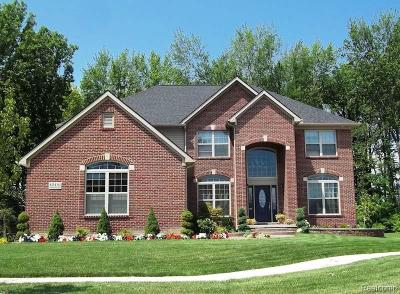 Addison Twp Single Family Home For Sale: 5333 Rochester
