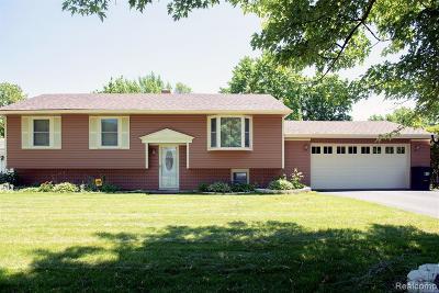 Wolverine Lake Vlg Single Family Home For Sale: 731 Los Arboles Drive