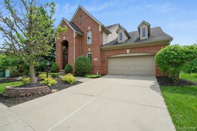 Novi Single Family Home For Sale: 41479 Thoreau Ridge