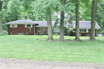 NORTHVILLE Single Family Home For Sale: 20137 W Whipple Drive