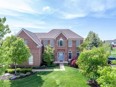 Novi Single Family Home For Sale: 24407 Bellingham Drive