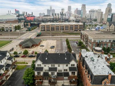 Detroit Condo/Townhouse For Sale: 49 Adelaide Street