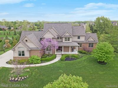 Novi Single Family Home For Sale: 22290 Waterland Drive
