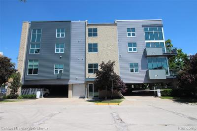 Royal Oak Condo/Townhouse For Sale: 614 S Troy Street #105