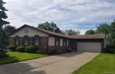 Livonia Single Family Home For Sale: 36133 6 Mile Road