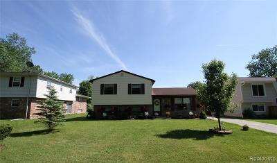 Brownstown Twp Single Family Home For Sale: 26311 Judy Circle