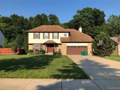 Brownstown Twp Single Family Home For Sale: 18259 Cedar Island Boulevard