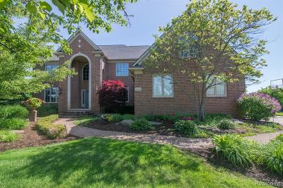 Oakland Twp Single Family Home For Sale: 3835 White Tail Drive