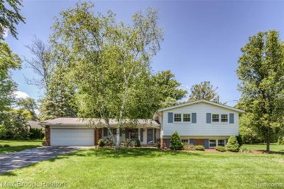 Bloomfield Twp Single Family Home For Sale: 7358 Cathedral Drive