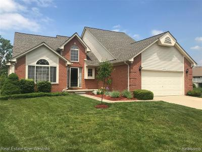 MACOMB Single Family Home For Sale: 50595 Plaza Drive