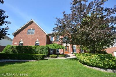 NOVI Single Family Home For Sale: 24793 Terra Del Mar Drive