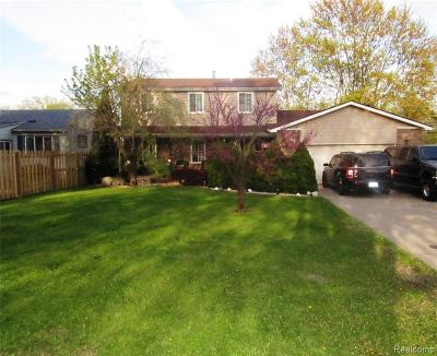 Macomb County, Oakland County, Wayne County Single Family Home For Sale: 31509 W Jefferson Avenue