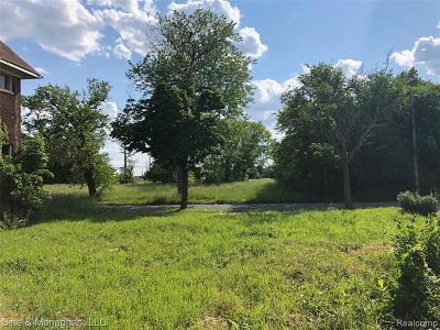 Detroit Residential Lots & Land For Sale: 1032 Navahoe
