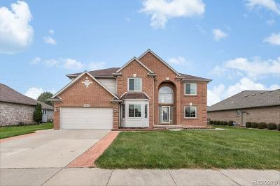 Macomb Twp Single Family Home For Sale: 21441 Mackenzie Drive