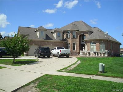 Shelby Twp Single Family Home For Sale: 51100 Forster Lane