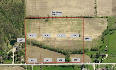 Macomb County Residential Lots & Land For Sale: Romeo Plank