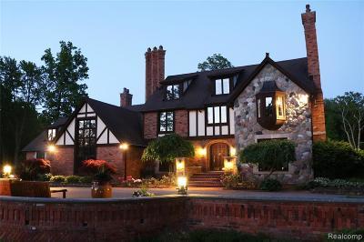 Oakland County Single Family Home For Sale: 10200 Bridge Lake Road