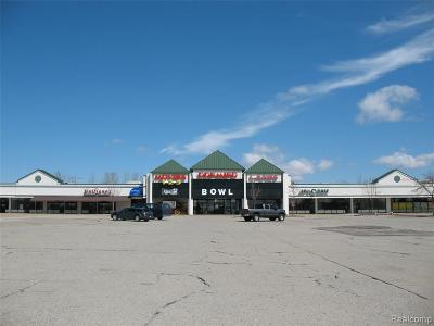 Chesterfield Twp MI Commercial For Sale: $3,000,000