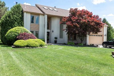 West Bloomfield, West Bloomfield Twp Single Family Home For Sale: 7143 Timberview Trail