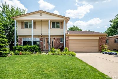 Macomb County Single Family Home For Sale: 35772 Duke Drive