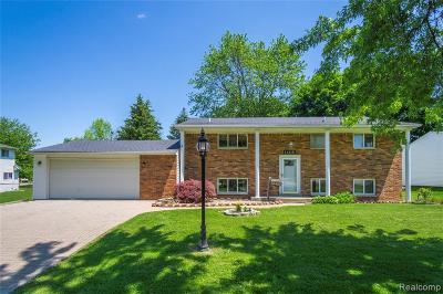 Grand Blanc Single Family Home For Sale: 11415 Hazel Avenue