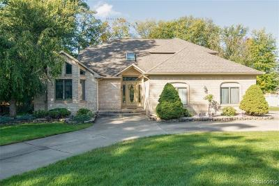 Grosse Ile Twp Single Family Home For Sale: 22194 Meridian Road