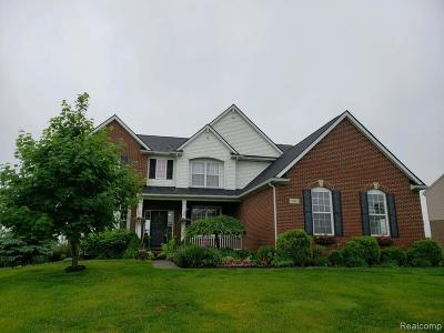 Oxford Single Family Home For Sale: 743 Brooks Lane