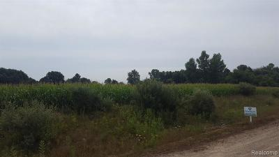 Residential Lots & Land For Sale: Arini Drive