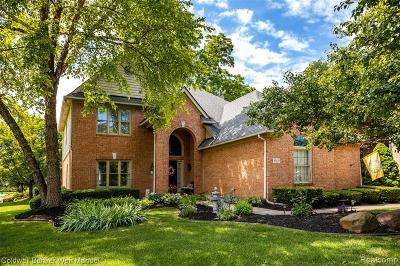 Novi Single Family Home For Sale: 43439 Castlewood