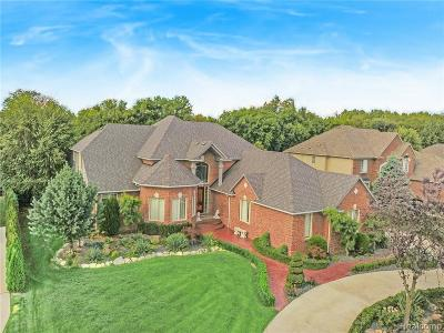 Washington Twp Single Family Home For Sale: 6229 Academy Drive