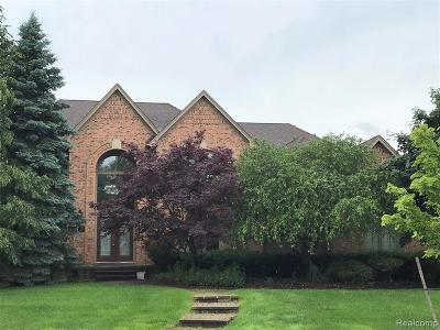 Troy Single Family Home For Sale: 4683 Squirrel Hill